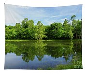 Ritter Springs Pond Tapestry