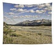 River Bed In Denali National Park Tapestry