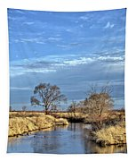 River Duck Morning 2 Tapestry