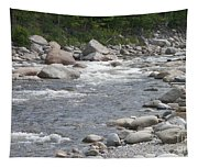 Rivers Of New Hampshire Tapestry