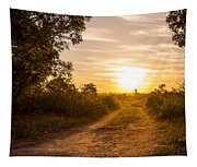 Road In Botswana Tapestry