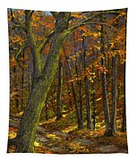 Road In The Woods Tapestry
