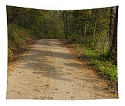 Road In Woods Autumn 2 A Tapestry
