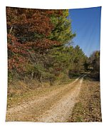 Road In Woods Autumn 5 Tapestry