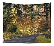 Road To Autumn Tapestry