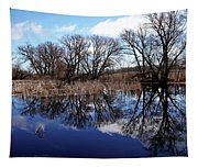 Roadside Pond I Tapestry