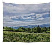 Roan Mountain 1 Tapestry