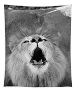 Roar  Black And White Tapestry