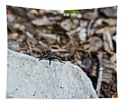 Robber Fly Sitting Tapestry