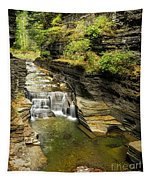 Robert H. Treman State Park Gorge Falls  Tapestry