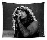 Robert Plant-0041 Tapestry