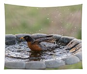 Robin In Bird Bath New Jersey  Tapestry