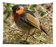 Robin In Hedgerow 3 Tapestry