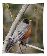 Robin In Tree 2 Tapestry