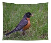 Robin On The Lawn Tapestry