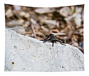 Rock And Robber Fly Tapestry