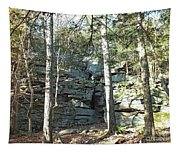 Rock Formation 3 - Ricketts Glen Tapestry