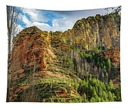 Rocks And Pines Tapestry