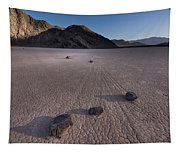 Rocks On The Racetrack Death Valley Tapestry