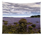 Rocky Cove In Sydney British Columbia Tapestry