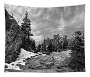 Rocky Mountain Beauty Tapestry