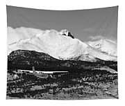 Rocky Mountain Flying  Tapestry