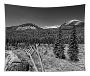 Rocky Mountain National Park Black And White Tapestry