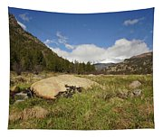 Rocky Mountain Valley Tapestry