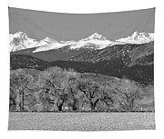 Rocky Mountain View Bw Tapestry