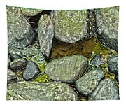 Rocky Nature Tapestry