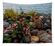 Rocky Shores Of Lake St. Clair- Michigan Tapestry