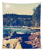 Rocky Shores Of Lake Superior Tapestry