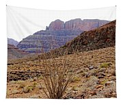 Rocky Slope Grand Canyon Tapestry