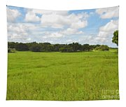 Rolling Pasture Tapestry