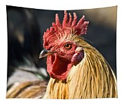 Rooster Up Close And Personal Tapestry