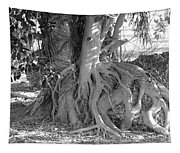 Rooted Tree Tapestry