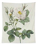 Rosa Alba Foliacea Tapestry