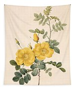 Rosa Eglanteria Tapestry
