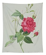 Rosa Indica Cruenta Tapestry