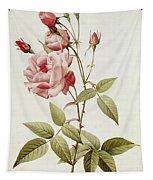 Rosa Indica Vulgaris Tapestry
