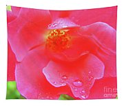 Rose And Raindrops Tapestry