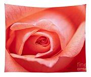 Rose Petals Tapestry