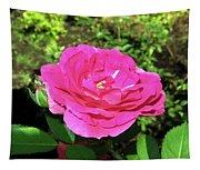 Roses 10 Tapestry