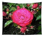 Roses 5 Tapestry