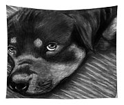 Rotty Tapestry