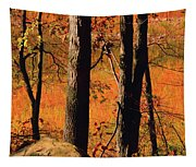 Round Valley State Park 3 Tapestry