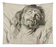 Rubens, Christ.  Tapestry