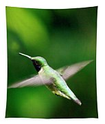 Ruby-throated Tapestry