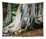 Rudraksha 1 Tapestry