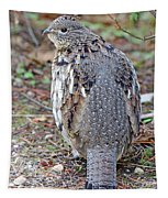 Ruffed Grouse Tapestry